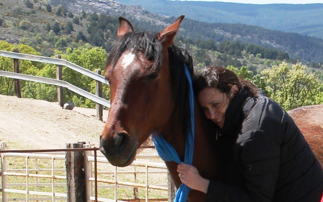 7 y 8 de julio en Cantabria. Conectando Con Nuestras Emociones Junto a los Caballos
