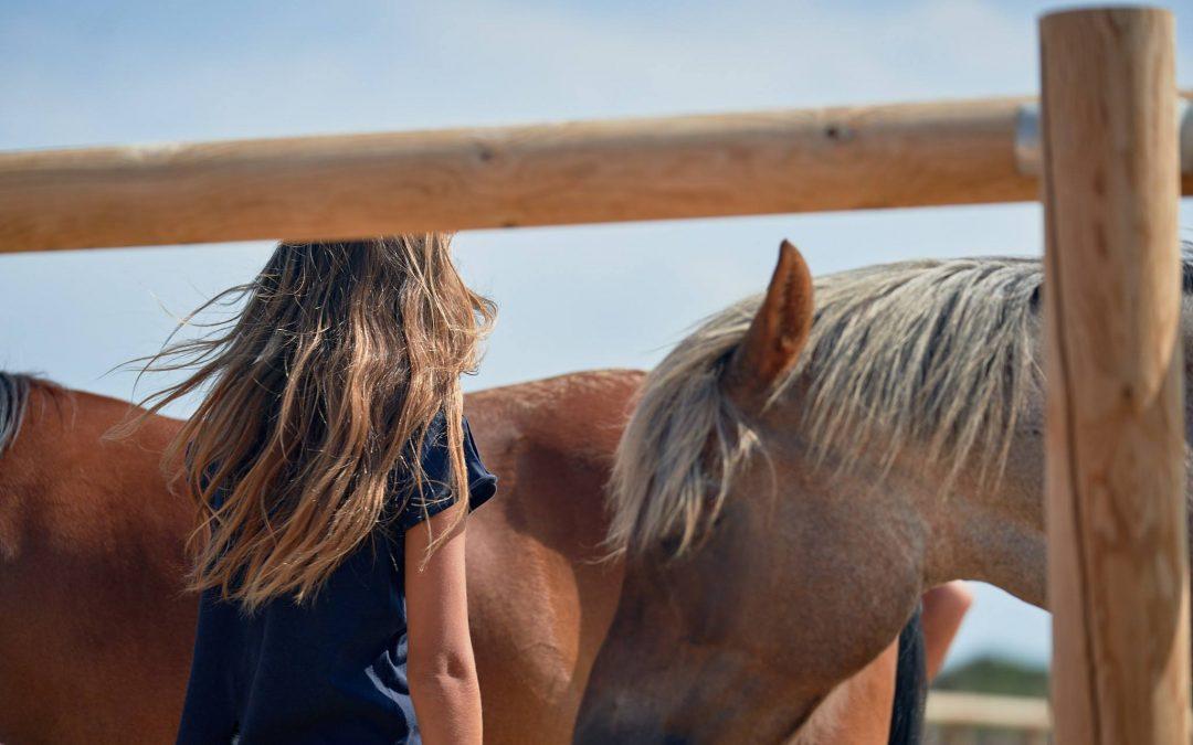 20 de Julio en Menorca – Inteligencia Emocional con Caballos Para Niños y Niñas