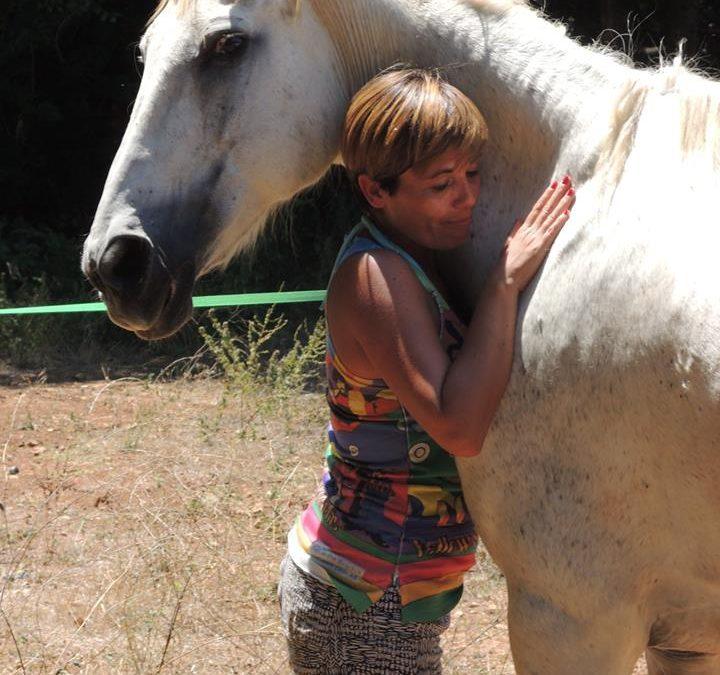 21 y 22 de julio en Menorca – Aprende, Siente y Disfruta Junto a los Caballos