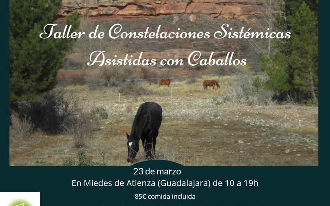 23 de Marzo Taller de Constelaciones Sistémicas Asistidas con Caballos