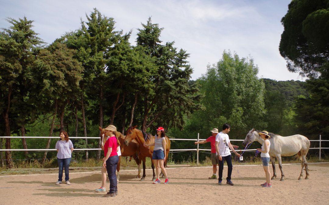 13 de julio – Creciendo junto a los caballos
