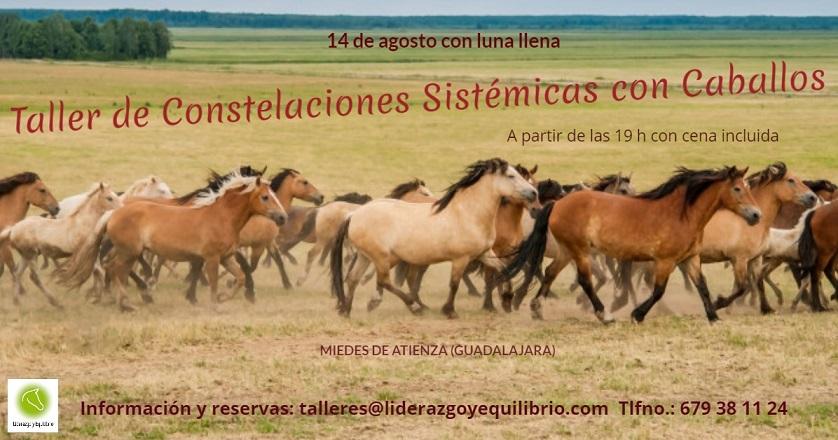 14 de agosto (con la luna llena) – Taller de constelaciones sistémicas asistidas con caballos