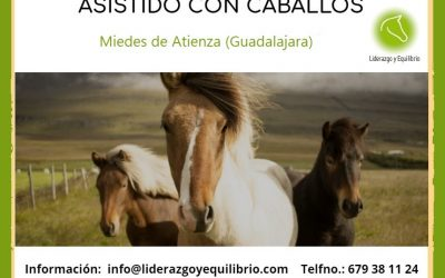 Formación Coaching Asistido con Caballos Julio 2.020 (Guadalajara)