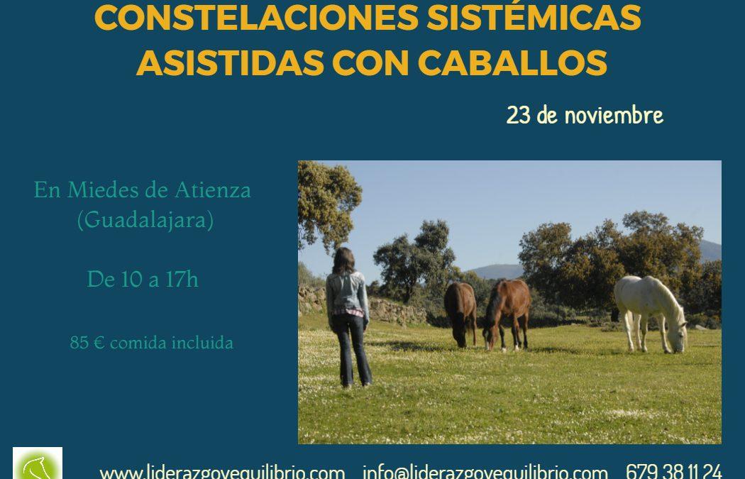 23 de noviembre – Taller de Constelaciones Sistémicas Asistidas con Caballos