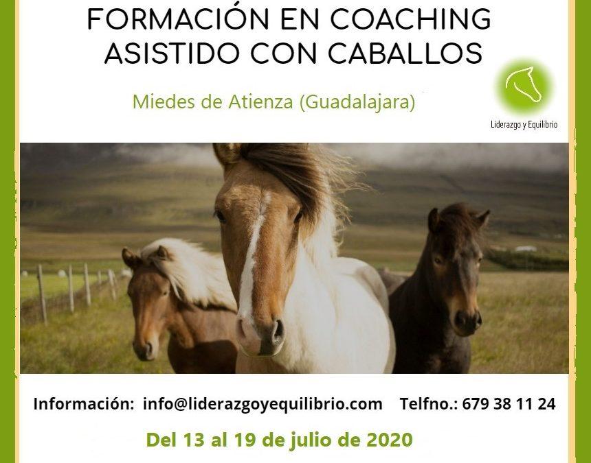 13 a 19 julio- Formación en Coaching Asistido con Caballos. Herramienta de coaching para acompañar a las personas en su crecimiento personal