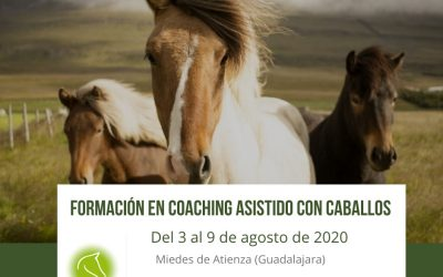 Formación coaching asistido con caballos. Agosto 2020 (Guadalajara)