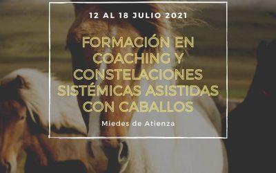 Formación práctica coaching y constelaciones sistémicas asistidas con caballos (Julio 2.021)