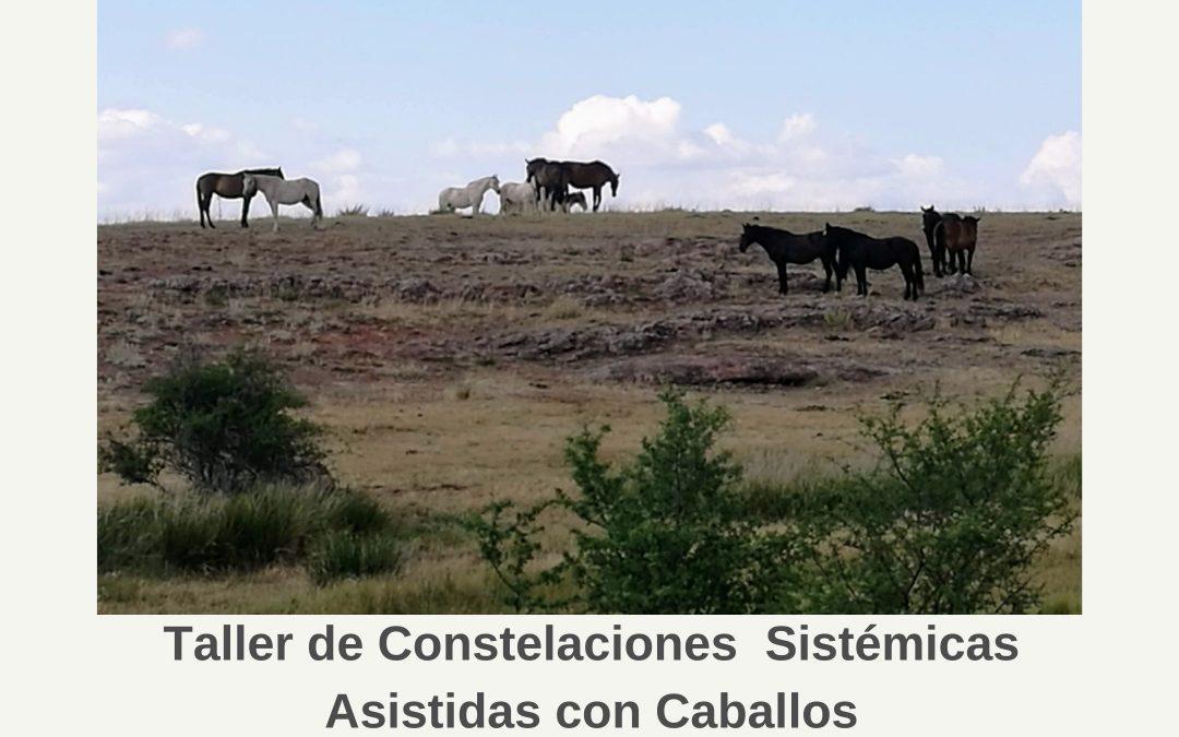 27 de febrero – Taller de constelaciones sistémicas asistidas con caballos