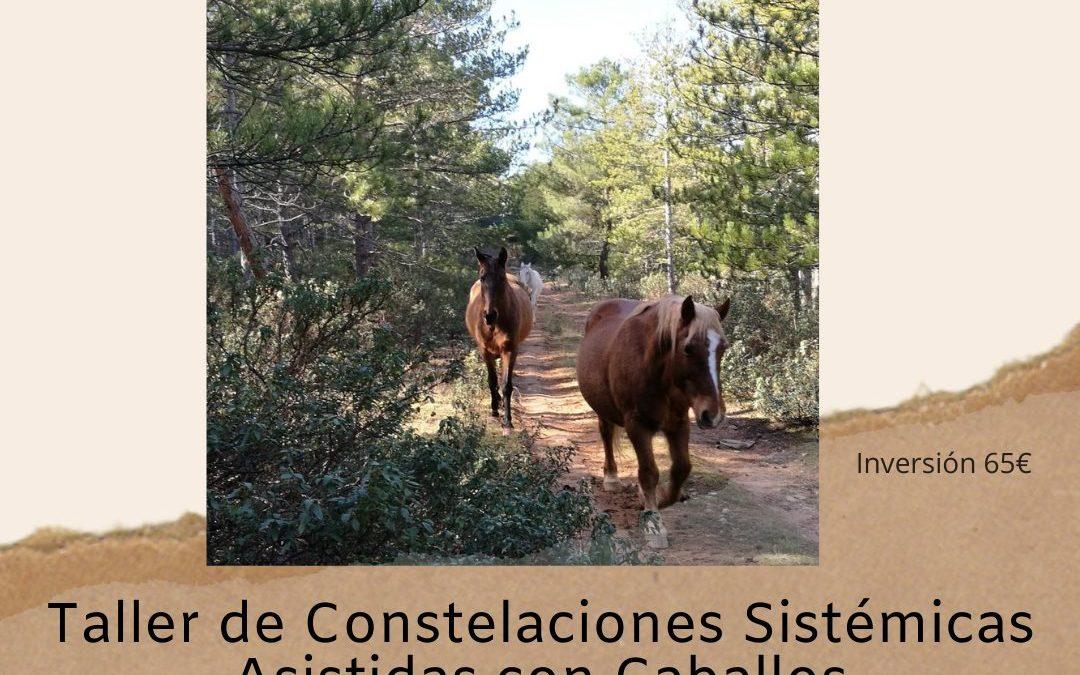 20 de marzo – Taller de Constelaciones Sistémicas Asistidas con Caballos