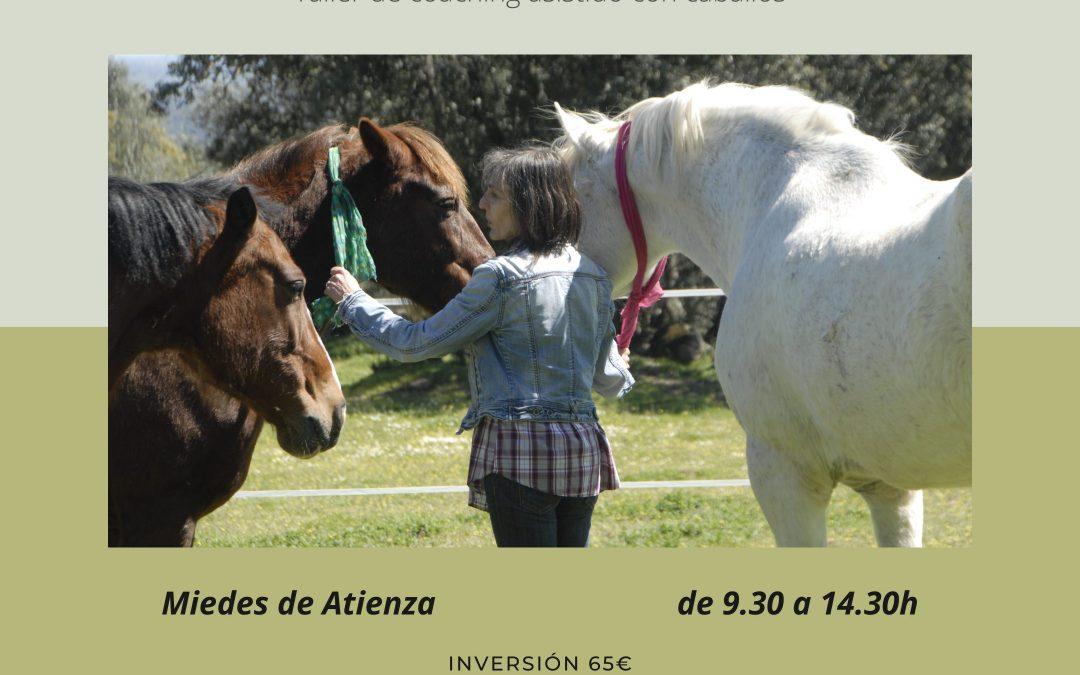 10 de abril – El reto de vivir mejor (Taller de coaching asistido con  caballos)