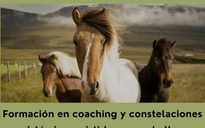 Formación en coaching y constelaciones sistémicas asistidas con caballos (Octubre 2.021 – Febrero 2.022)